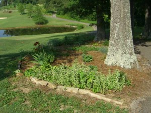Kentucky Dam Village State Resort Golf Course