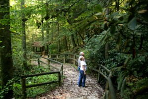 Kentucky State Parks: Natural Bridge State Resort Park