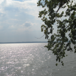 View of Kentucky Lake at Lighthouse Landing
