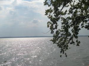 View of Kentucky Lake at Lighthouse Landing