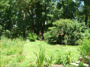 Nature Station Land Between the Lakes