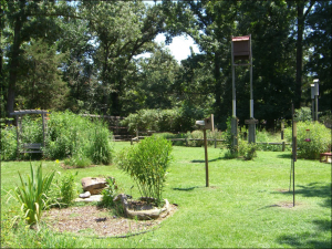 Nature Station, Land Between the Lakes