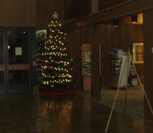 Barren River Christmas Decorations 2012