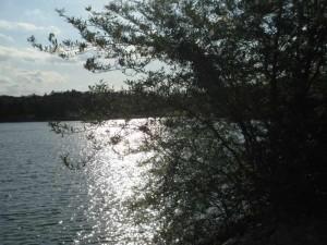 Kentucky Lake June 2012