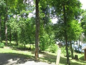Pennyrile Forest State Park Cottage
