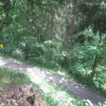 A Pennyrile Forest State Resort Park Trail