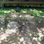 A Native Garden beside the Lodge