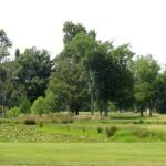 Pond at Pennyrile Forest State Resort Park