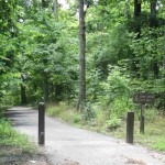 Hiking Trails at Pennyrile Forest State Park