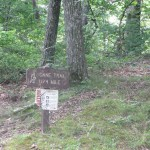 Hiking Trail at Pennyrile Forest State Park
