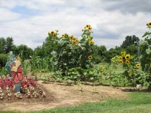 Western Kentucky Botanical Gardens in Owensboro Kentucky