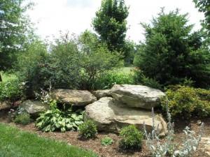Western Kentucky Botanical Gardens