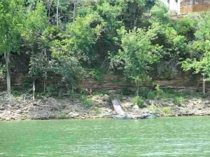 Fishing Rough River Lake