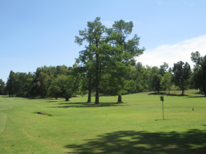 Kentucky Dam Village State Resort Park Golf Course