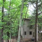 Lake Cumberland State Park Cabins