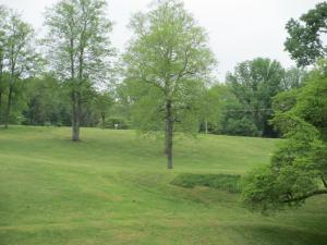 Lake Cumberland Disc Golf Course