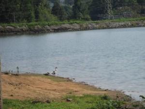Loch Mary, Earlington, Ky