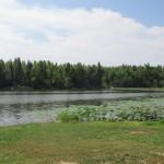 Loch Mary, Earlington