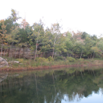 Autumn on Rough River Lake
