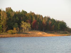 Autumn on Rough River Lake