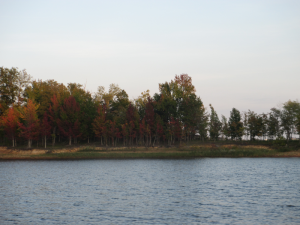 Rough River Lake in the Autumn
