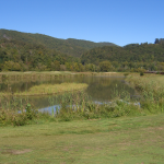 Seasonal Deals for Golfers this Fall at Pine Mountain State Resort Park
