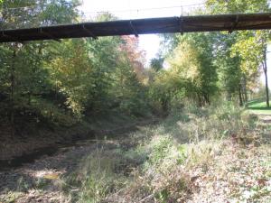 Panther Creek Park, Autumn
