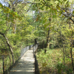 Panther Creek Park Bridge