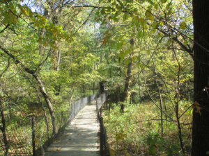 Panther Creek Park Bridge