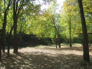 Panther Creek, Panther Creek Park