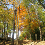 Panther Creek Park in Autumn