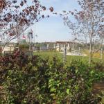 Smothers Park Owensboro