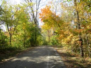 Autumn road in Kentucky