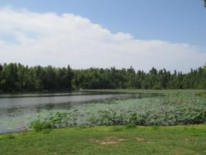 Loch Mary in Earlington Kentucky