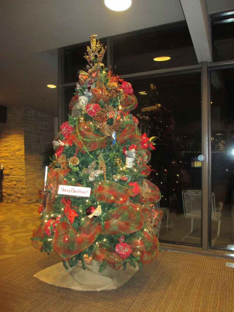 Christmas Tree at Rough River Dam State Resort Park