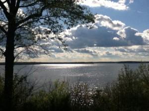 Kentucky Lake Picture