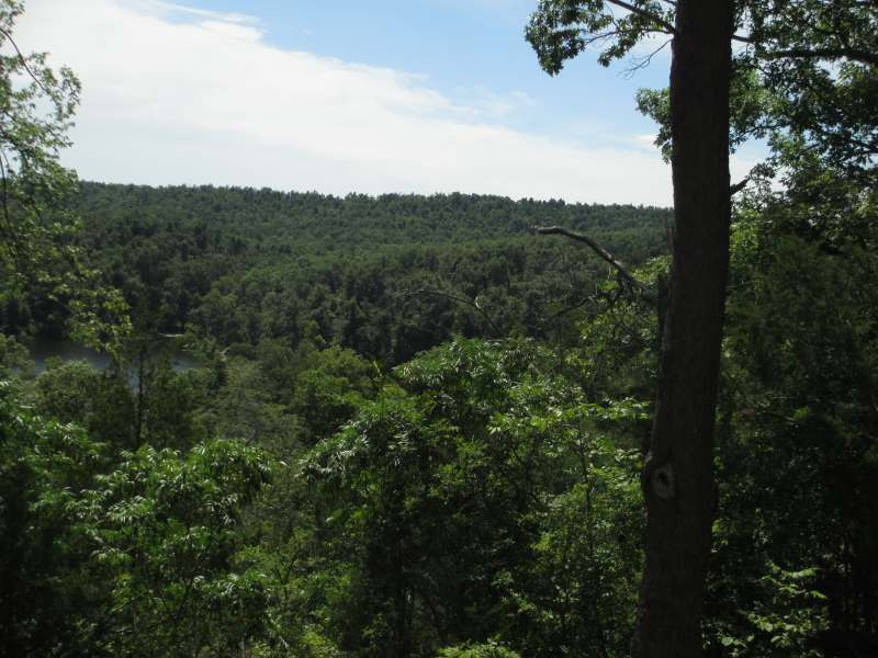 Pennyrile Forest State Park