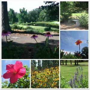 Kentucky Dam Village State Resort Park Golf Course Flowers