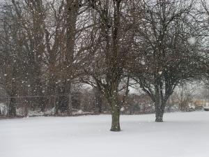 Kentucky Snow Feb. 2014
