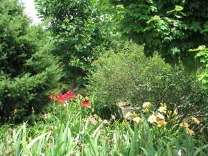 Kentucky Flowers