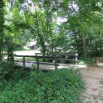 Chicken Crossing the Bridge at The Homeplace LBL
