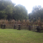 Autumn Scene at The Homeplace