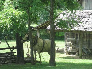Homeplace, Land Between the Lakes