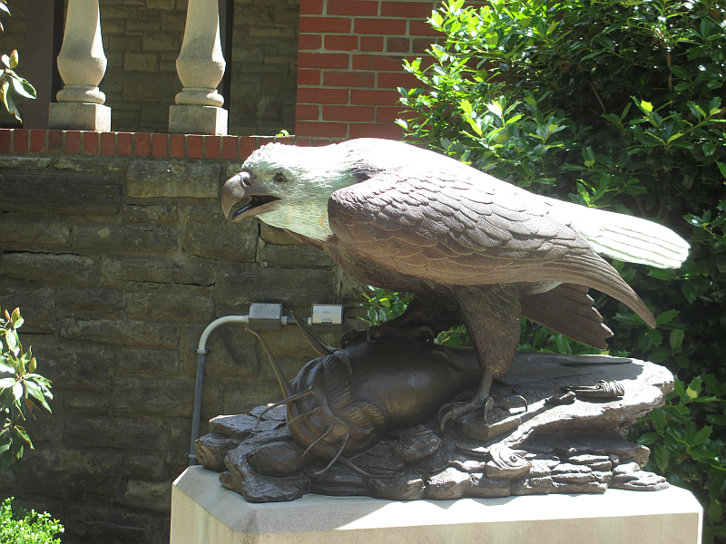 Bald Eagle Statue at John James Audubon State Park