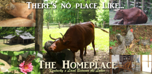 The Homeplace in Kentucky's Land Between the Lakes