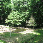 Behind the Audubon Museum and Nature Center