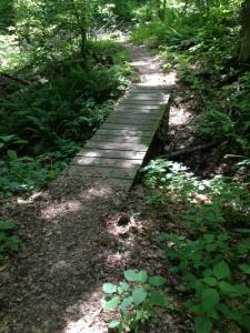 John James Audubon State Park Trails