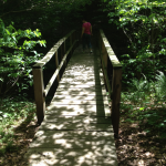John James Audubon State Park Trails