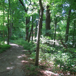 Trails at James Audubon State Park