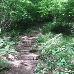 National Trails Day at Kentucky State Parks is Just Around the Corner